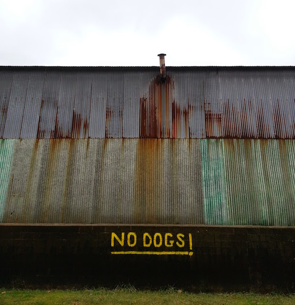 """No Dogs!"" painted on side of small factory in Millvale"