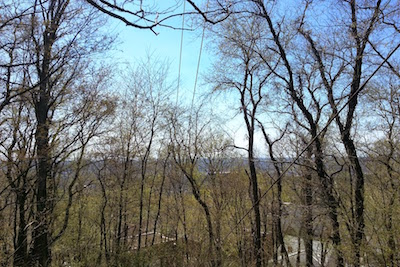 View from Pittsburgh's highpoint showing mainly trees
