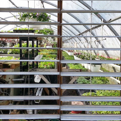 view of greenhouse through ventilation slats