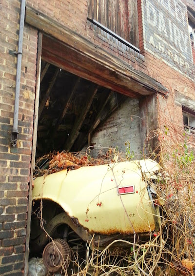 Tree growing through a car in a former dairy in an alley in Pittsburgh, Pa.