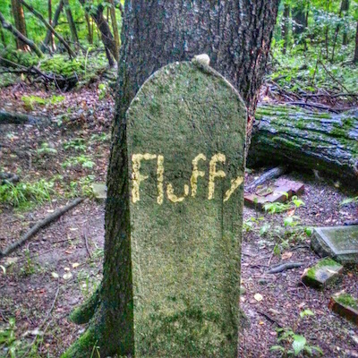 "stone grave marker with pet's name ""Fluffy"", Lily Dale, NY"