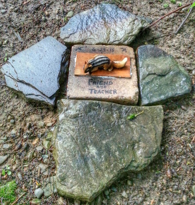 stone grave marker for a chipmunk, Lily Dale, NY