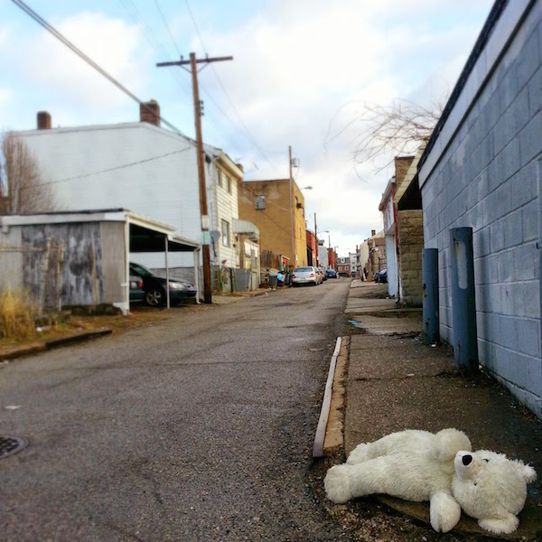 Stuffed polar bear toy in alley