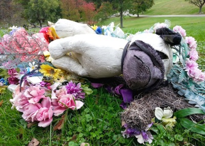 stuffed animal dog on bed of plastic flowers, Allegheny Cemetery, Pittsburgh, PA