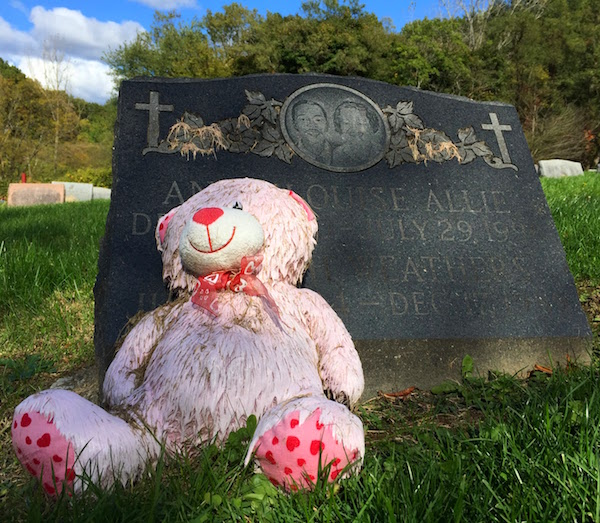 pink teddy bear leaning against gravestone