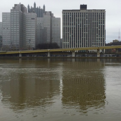 View of downtown Pittsburgh and the Allegheny River from the North Side with Adjutant murals visible under the Fort Duquesne Bridge ramp