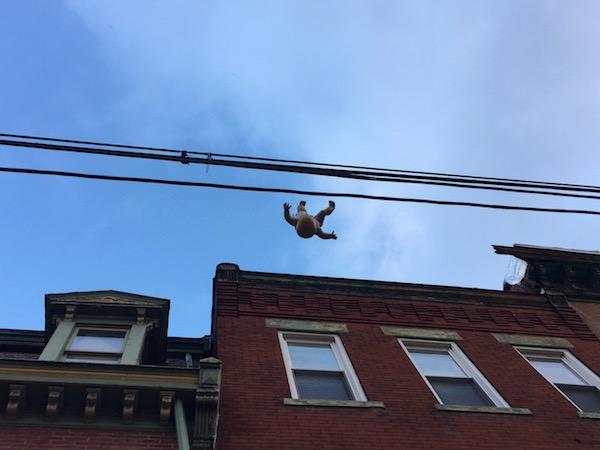 dangling baby w Penn Ave facades