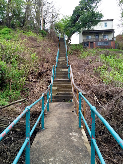 Long middle section of the 54th Street city steps, Pittsburgh, PA