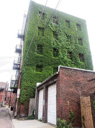ivy-covered 5-story brick building, Pittsburgh, PA