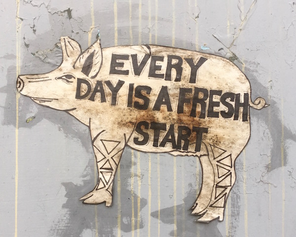 "drawing of a pig with the text ""Every day is a fresh start"" wheatpasted to mail box, Pittsburgh, PA"