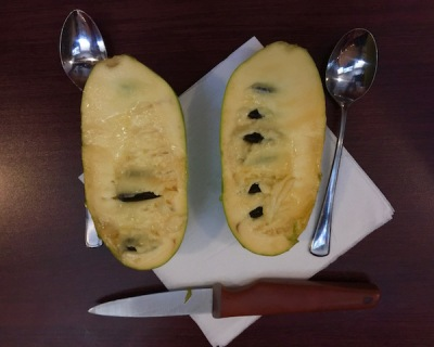 A large pawpaw cut in half with spoons and a knife