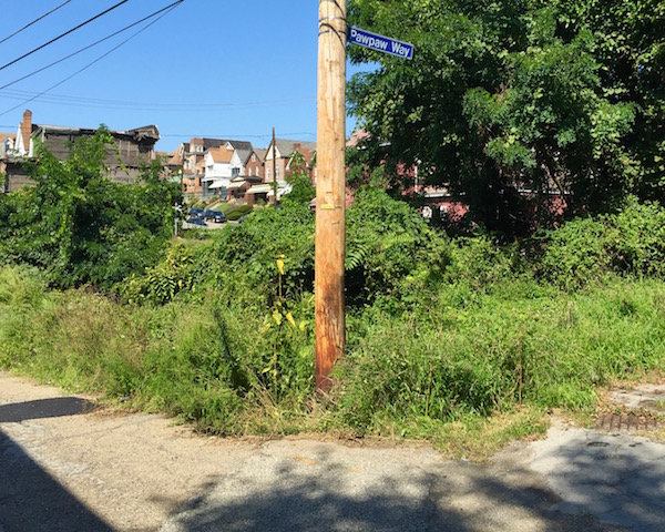 """Alley intersection with street sign marking """"Pawpaw Way"""", Pittsburgh, PA"""