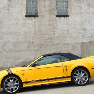black and gold Ford Mustang in front of gray wall, Arnold, PA