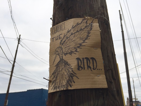 "cardboard sign with pen drawing of a bird and the text ""Clarence the Bird..."", Pittsburgh, PA"