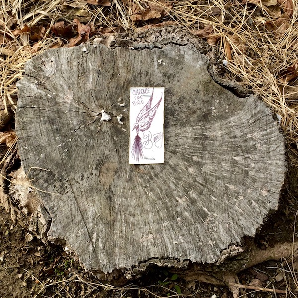 tiny paper drawing of Clarence the Bird stapled to tree stump, Pittsburgh, PA