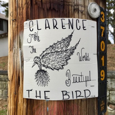 """Clarence the Bird"" hand-drawn artwork stapled to telephone pole, Pittsburgh, PA"