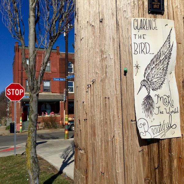 Clarence the Bird artwork stapled to telephone pole, Pittsburgh, PA