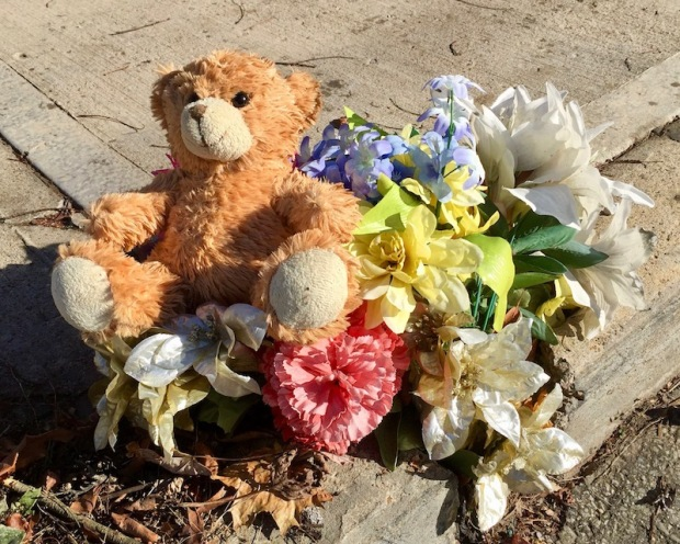 teddy bear and plastic flowers left on curbside, Pittsburgh, PA
