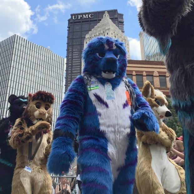 fursuit blue bear costume, Anthrocon 2017 Fursuit Parade, Pittsburgh, PA