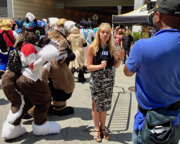 KDKA News photographer and reporter covering Anthrocon 2017 Fursuit Parade, Pittsburgh, PA