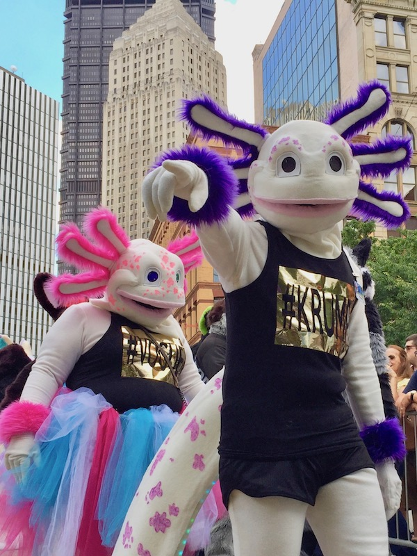 """indeterminate fursuit costumes with shirts """"#KRUMP"""" and """"#VOGUE"""", Anthrocon 2017 Fursuit Parade, Pittsburgh, PA"""