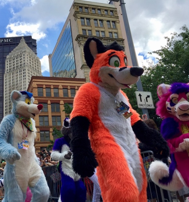 fursuits various color dogs, Anthrocon 2017 Fursuit Parade, Pittsburgh, PA