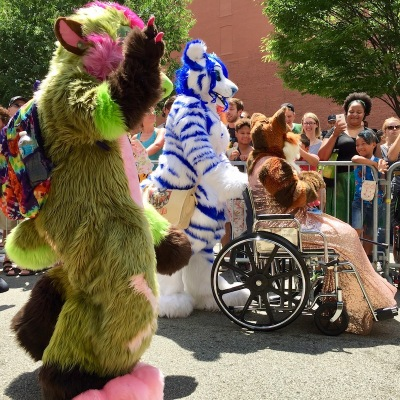 fursuits of green and pink bear, blue and white bear, and evening attire fox in wheelchair, Anthrocon 2017 Fursuit Parade, Pittsburgh, PA