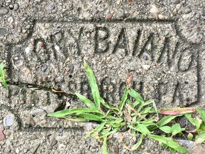 sidewalk stamp for Tory Baiano, Pittsburgh, PA