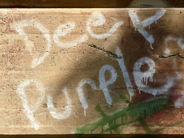 spray paint graffiti for Deep Purple, New Brighton, PA