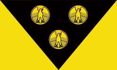 "proposed Pittsburgh city flag by ""Goob"", with gold eagle-fronted coins on black triangle on gold field"
