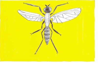 design sugestion for new Pittsburgh flag by Ray Strobel with a drawing of a gnat on a gold field