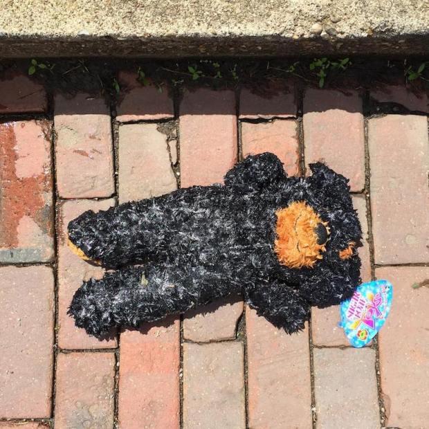 stuffed animal bear laying on brick street, Millvale, PA