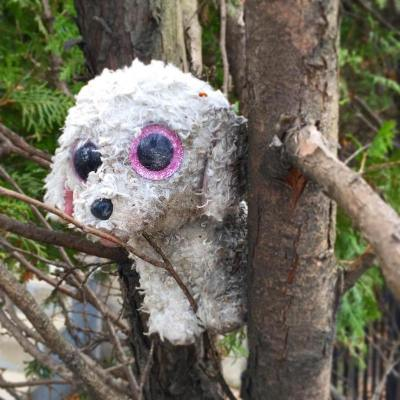 stuffed animal dog wedged in between tree limbs, Pittsburgh, PA