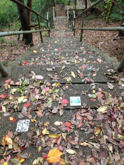 autumn leaves on long set of public steps in Pittsburgh, PA