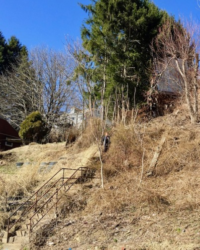 hillside with staircase overgrown with weeds, Pittsburgh, PA