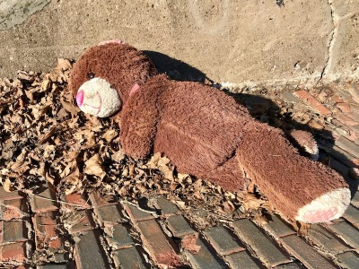 large teddy bear laying on brick street, McKeesport, PA
