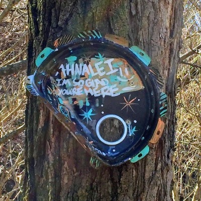 large metal can lid painted and nailed to a tree, Pittsburgh, PA