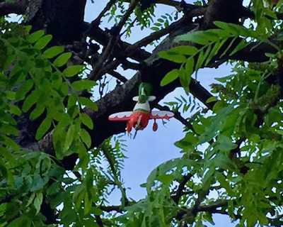toy airplane hanging from wire in tree limbs