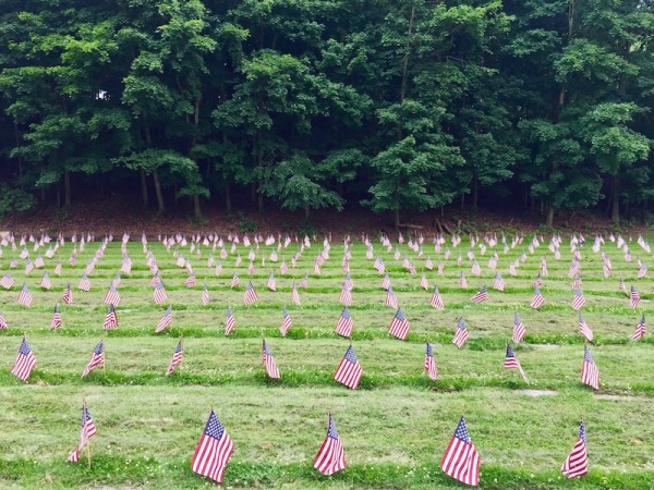 rows of small flags marking surface-level military graves in Allegheny Cemetery, Pittsburgh, PA