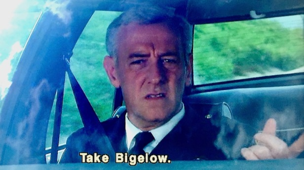 "screen capture from the film ""Striking Distance"" of actor John Mahoney as police officer riding in passenger seat of car"