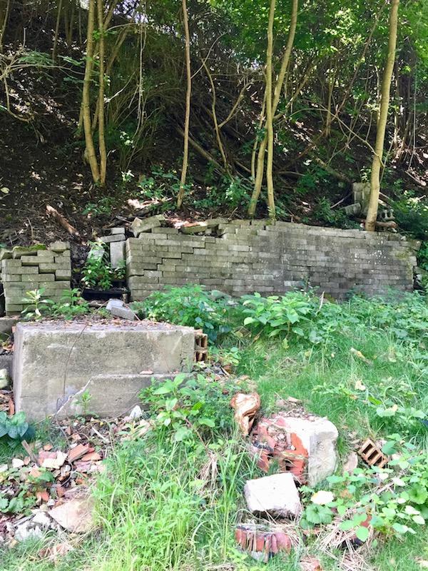 overgrown hillside with retaining wall and masonry debris, Clairton, PA