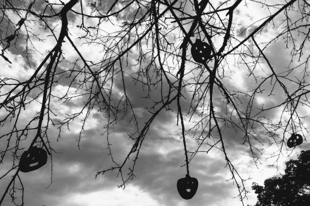 wooden Jack-o-lantern ornaments hanging from bare tree limbs