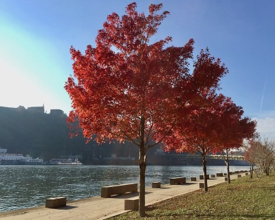 Mon Wharf path in downtown Pittsburgh, PA