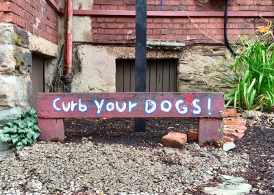 "metal rail painted with message ""Curb your dogs!"""