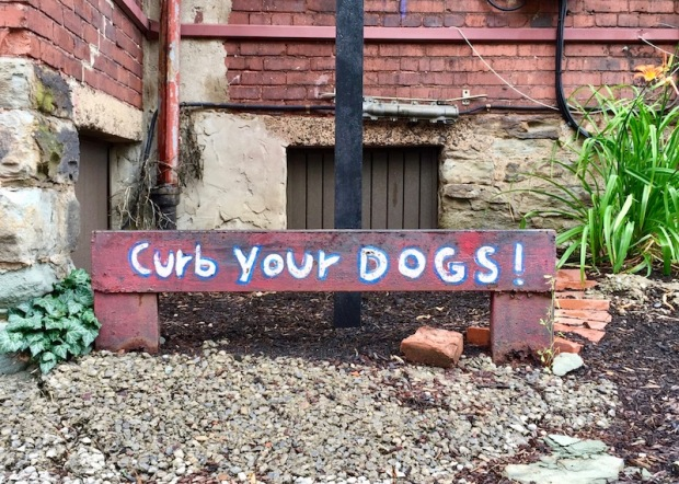 """metal rail painted with message """"Curb your dogs!"""""""