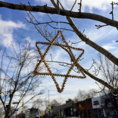 golden wire Star of David on tree limb, Pittsburgh, PA
