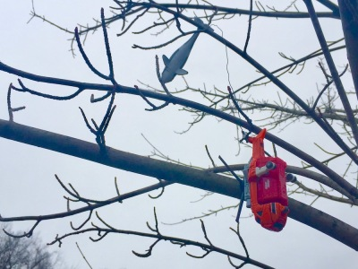 toys dangling from tree limbs