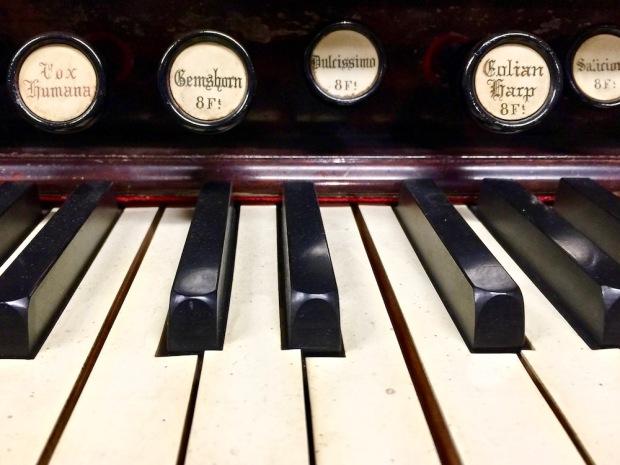 close-up of pump organ keyboard and stops
