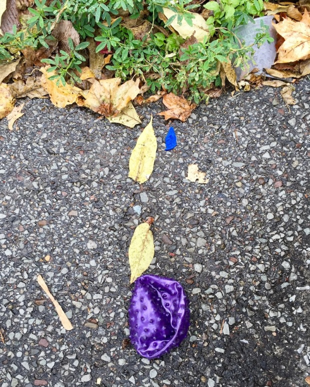deflated toy ball left on street