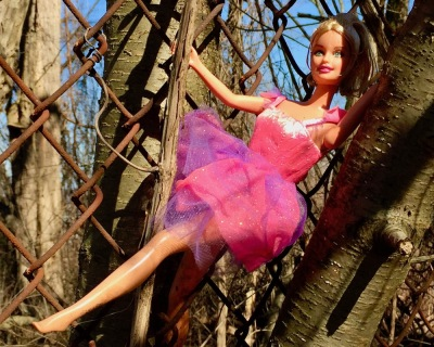 Barbie doll placed in a tree branch